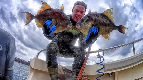 December baja fishing report for What fish are biting this time of year