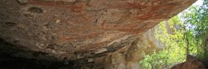 san_borjitas_cave_paintings_baja