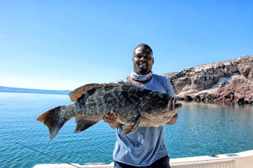 June_baja_fishing_report