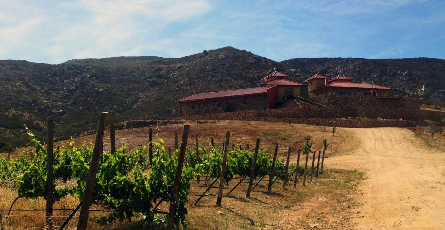 las nubes winery valle de guadalupe