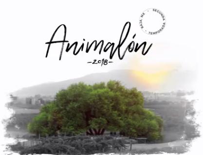 Animalon 2018