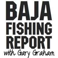 Baja Fishing Report Gary Graham