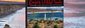 Baja's Wild Side