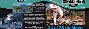 Expo Tequila Rosarito