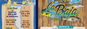 Pesca La Baja 2016