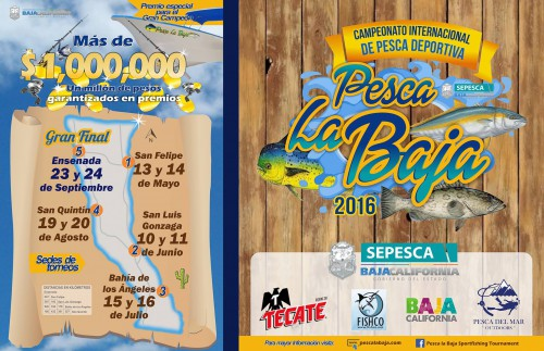 FLYER March Baja Fishing Report