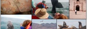 Graham Baja trip