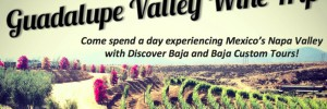 Guadalupe Valle Winery Day Trip July 19