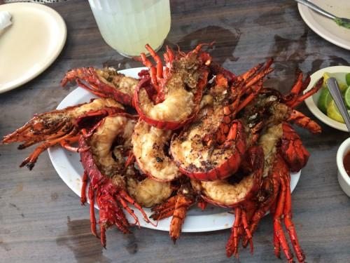 puerto nuevo lobster dinner baja mexico
