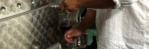 Claudius Winery Rosarito Baja