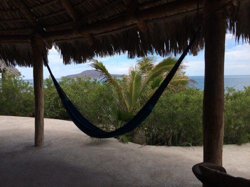 La picazon loreto hammock