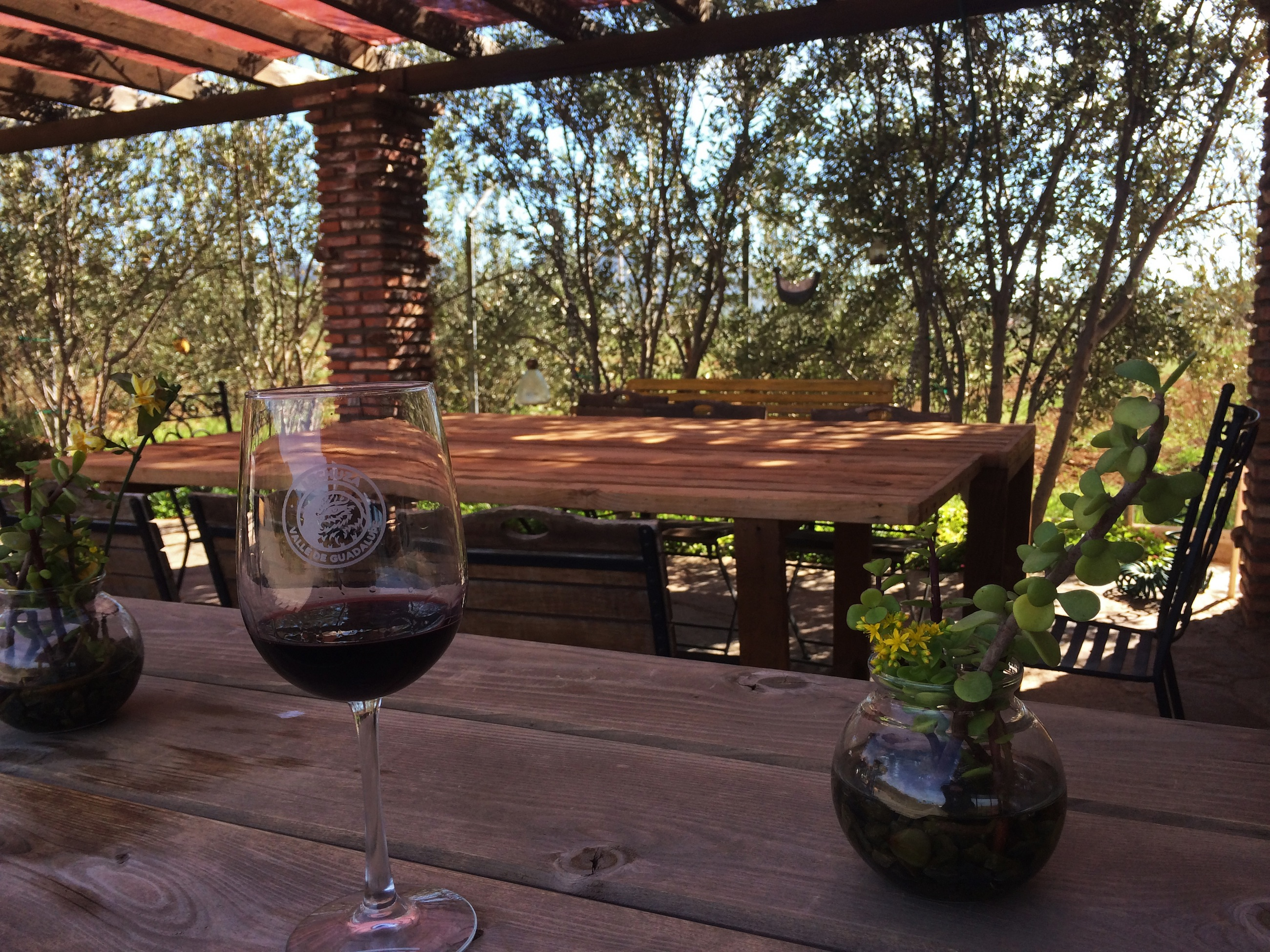 peninsula picks 5 boutique wineries in valle de guadalupe