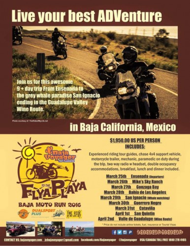Motorcycle Touring Discover Baja Carla King