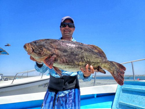baja fishing report