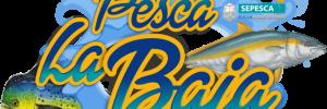 Pesca_La_Baja