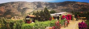 Viñas de Garza Guadalupe Valley Valle de Guadalupe Baja Mexico wine