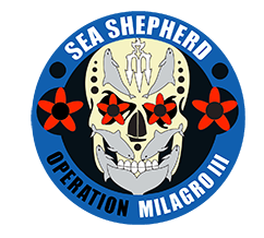 sea shepherd operation milagro - vaquita