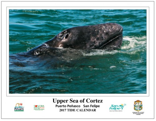 upper sea of cortez tide calendar 2017