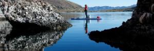 carla-king_paddleboard-baja1-500x335