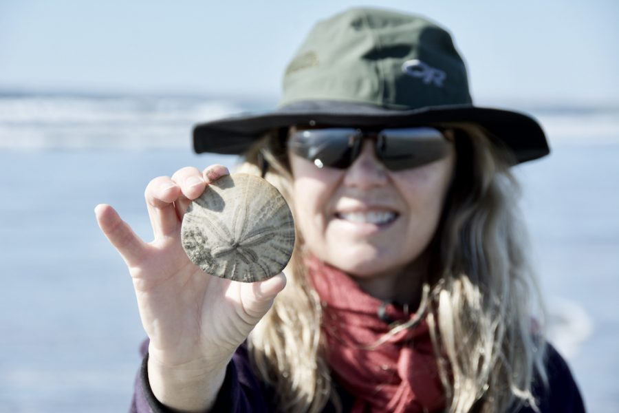 Carla King Sand Dollar San Quintin Beach