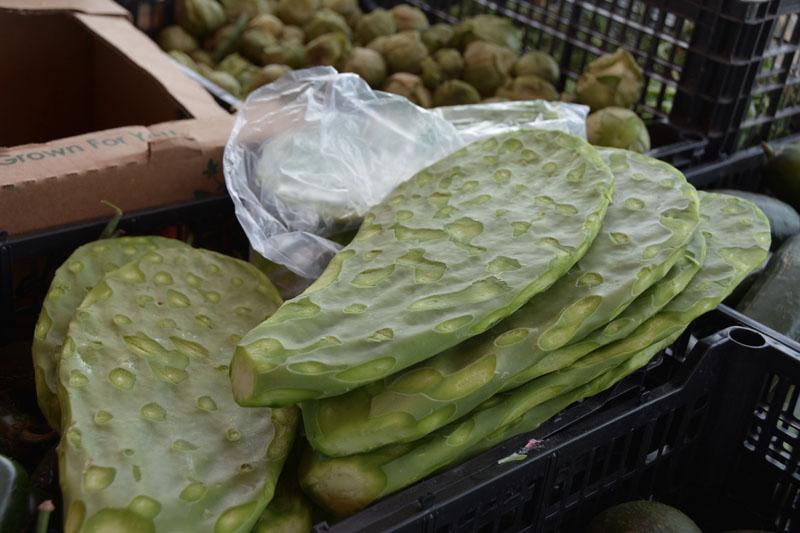Nopales in San Juanico Friday farmer's market