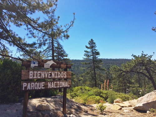 parque nacional national park sierra de san pedro martir