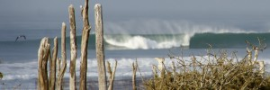 scorpion bay baja surf
